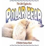 The Life Cycle of a Polar Bear by Rebecca Sjonger