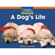 Windows on Literacy Step Up (Science: Animals Around Us): A Dog's Life by National Geographic Learning