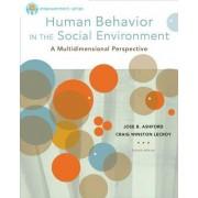 Brooks Cole Empowerment Series: Human Behavior in the Social Environment by Jose B. Ashford