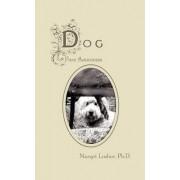 Dog by Margot Lasher