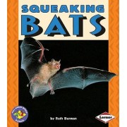 Squeaking Bats by Dr Ruth Berman