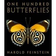 One Hundred Butterflies by Harold Feinstein