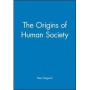 The Origins of Human Society by Peter Bogucki
