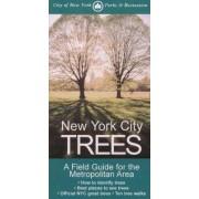 New York City Trees by Edward S. Barnard