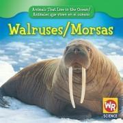 Walruses/Morsas by Valerie J Weber