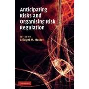 Anticipating Risks and Organising Risk Regulation by Bridget M. Hutter
