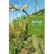 What is Biodynamic Wine? by Nicholas Joly