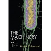 The Machinery of Life by David S. Goodsell