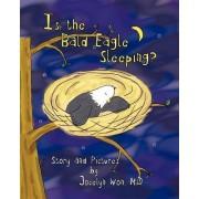 Is the Bald Eagle Sleeping? by Jocelyn Won