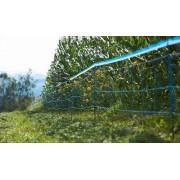 AgriShop Wildschwein Abwehrnetz, 50 Meter