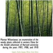 Plantae Wilsonianae; An Enumeration of the Woody Plants Collected in Western China for the Arnold AR by Sargent Charles Sprague