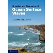 Breaking and Dissipation of Ocean Surface Waves by Alexander Babanin