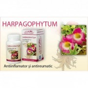 Harpagophytum 60 cpr Dacia Plant