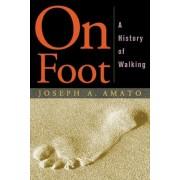 On Foot by Joseph Amato