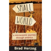 Small World: A Microcosmic Journey Through America