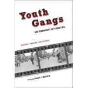 Youth Gangs and Community Intervention by Robert Chaskin