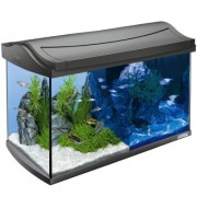 Tetra AquaArt LED Aquarium Complete Set - Zwart