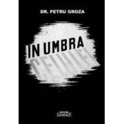 In umbra celulei - Petru Groza