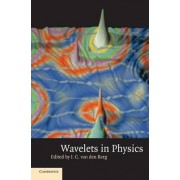 Wavelets in Physics by J. C. Van Den Berg
