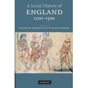 A Social History of England, 1200-1500 by Rosemary Horrox
