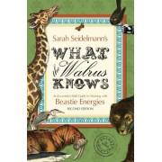 What the Walrus Knows by Sarah Seidelmann
