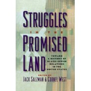 Struggles in the Promised Land by Jack Salzman