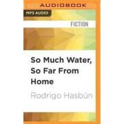 So Much Water, So Far from Home by Rodrigo Hasbun