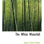 The White Waterfall by James Francis Dwyer