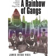 A Rainbow of Gangs by Diego Vigil