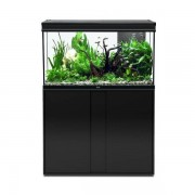 AQUATLANTIS Aquarium Elegance Expert 100x40 Led Noir - Aquatlantis - SOLDE