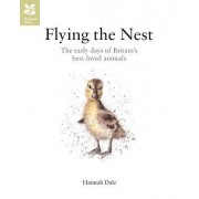 Flying the Nest: Britain's Best-Loved Baby Animals by Hannah Dale