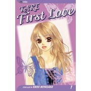 Kare First Love: v. 1 by Kaho Miyasaka