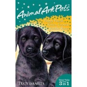 Animal Ark Pets Bind Up 1-3: Puppy Puzzle / Kitten Crowd / Rabbit Race Books 1-3 by Lucy Daniels
