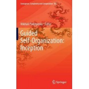 Guided Self-Organization: Inception by Mikhail Prokopenko