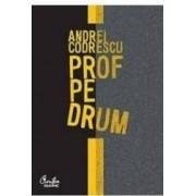 Prof Pe Drum - Andrei Codrescu