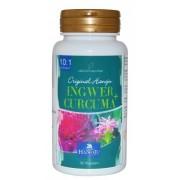 Gingembre - Curcuma - 10:1 extrait - 500 mg - 90 gélules