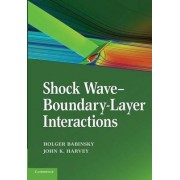 Shock Wave-Boundary-Layer Interactions by Holger Babinsky