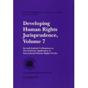 Developing Human Rights Jurisprudence: Judicial Colloquium in Georgetown, Guyana from 3 to 5 September 1996 v. 7 by Commonwealth Secretariat