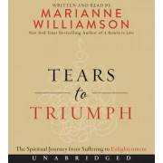 Tears to Triumph CD: The Spiritual Journey from Suffering to Enlightenment