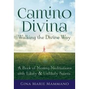 Camino Divinaawalking the Divine Way: A Book of Moving Meditations with Likely and Unlikely Saints