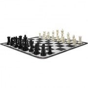 Chess Set(Assorted)