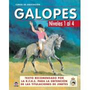 Los Autores de Galopes CURSO DE EQUITACIÓN. GALOPES. NIVELES 1 AL 4 (Curso De Equitacion / Equitation Course)