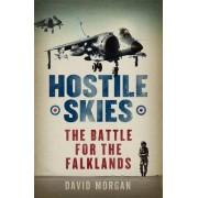 Hostile Skies by David Morgan
