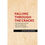 Falling Through the Cracks by Joan Berzoff