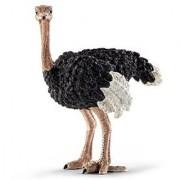 Schleich Ostrich 14325