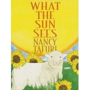 What the Sun Sees by Nancy Tafuri