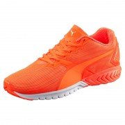 Puma Ignite Dual Nightcat orange