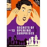 Secrets of Opening Surprises, Vol. 13 by Jeroen Bosch