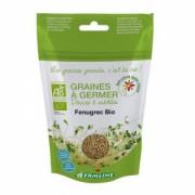 Seminte de schinduf Bio pentru germinare