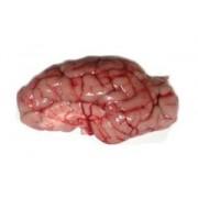 Мозък от млечно теле охладен 300гр